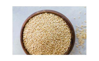 Alla scoperta della Quinoa