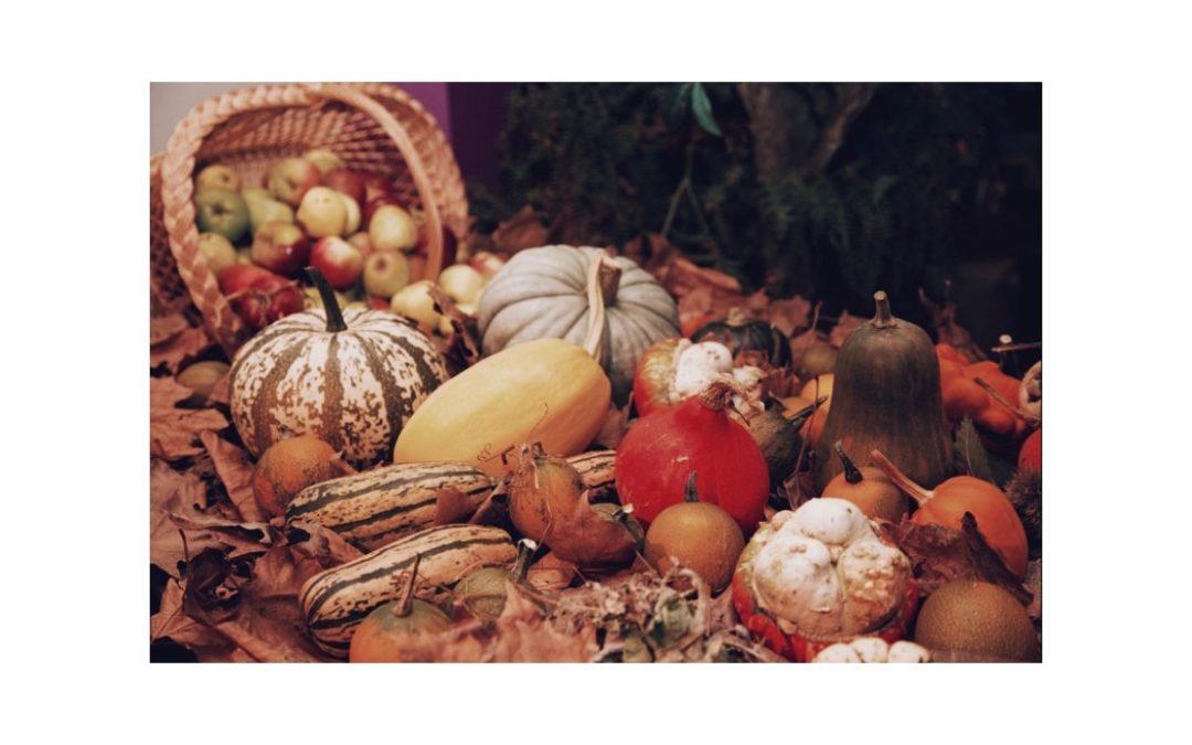 Al ritmo delle stagioni: la spesa di Ottobre