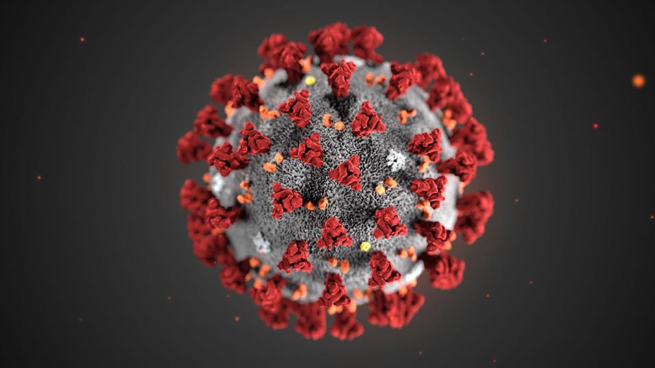 Coronavirus e corretta informazione